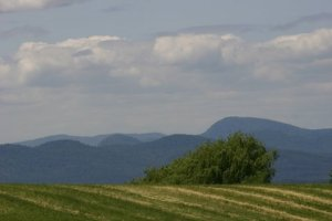 Hayfields, Lake Champlain Valley