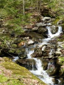 Stream In Spring