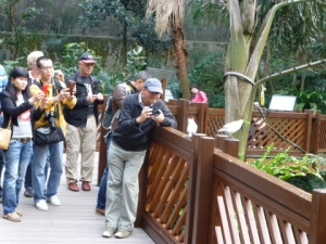 Photographers, Aviary, Hong Kong Park