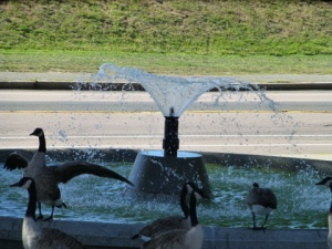 Goose_Fountain