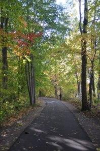 Autumn_Path
