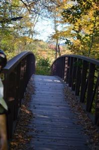 Autumn_Bridge_Stowe
