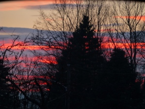 Winter_Evening