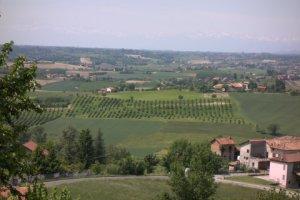 Landscape_Near_Torino