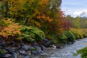 Autumn_Creek