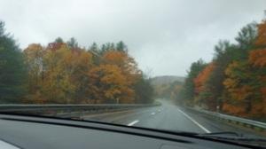 Autumn_Rain