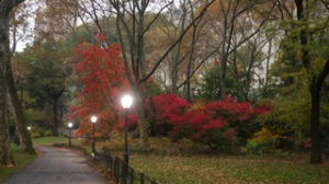 Fall_Twilight_Central_Park