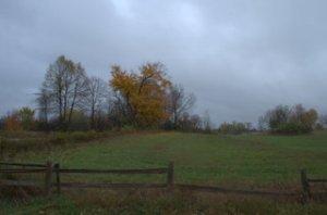 November_Field