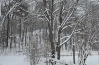 winter_hill