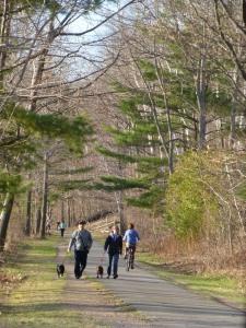 Spring_Walk